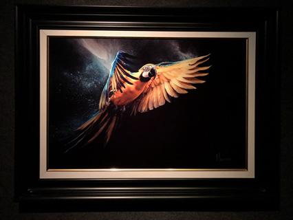 Muldoon-Parrot Muldoon
