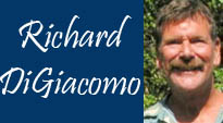 artists-richard-digiacomo