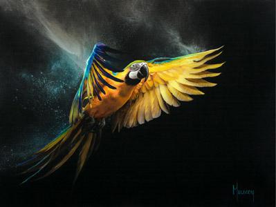 Free Bird-small