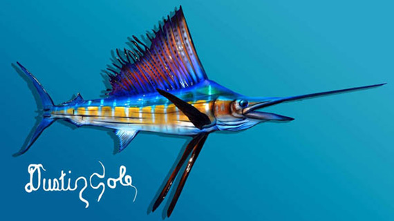 Cole-Sailfish
