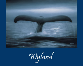 Wyland Art at Ocean Blue Galleries Winter Park - Art Gallery Orlando Area